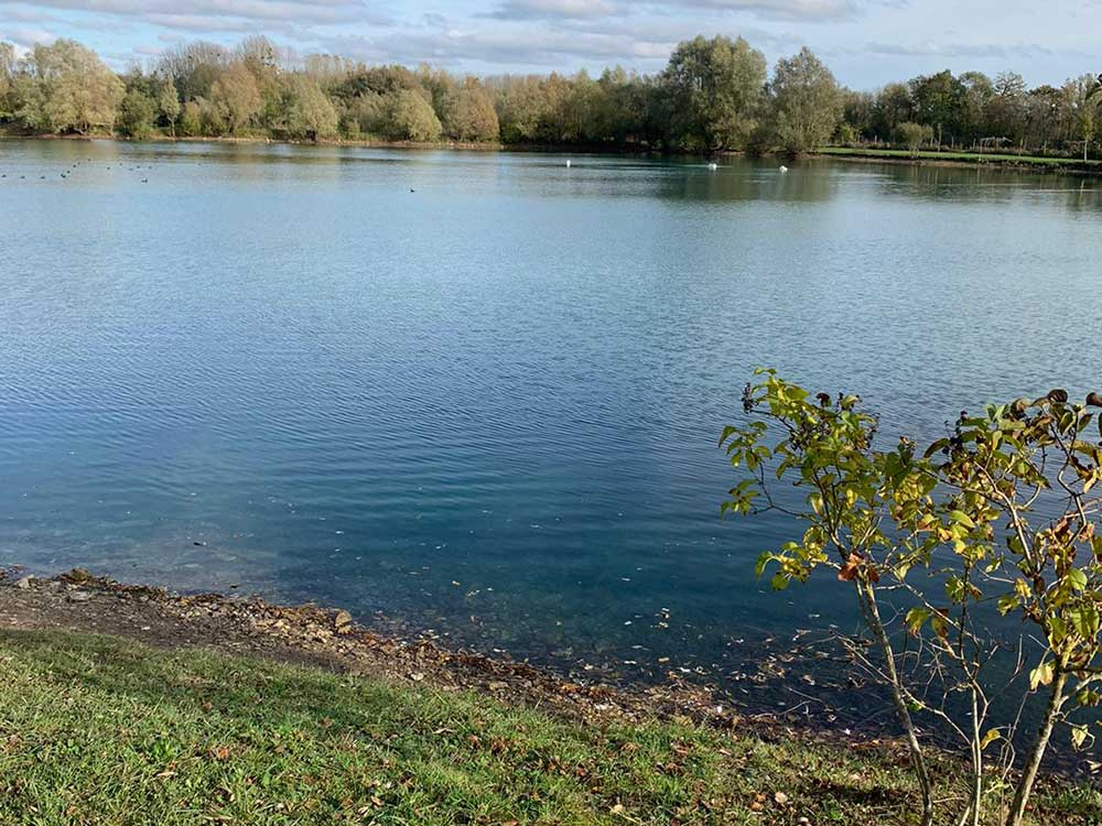 Duclair Swim Willow Lake