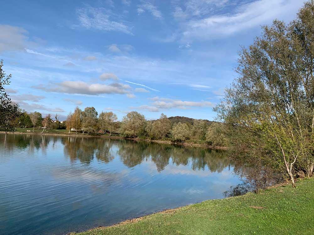 Mandarin Swim Willow Lake