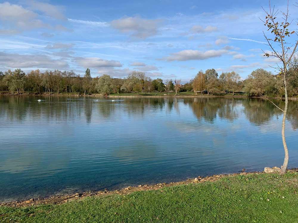 Pekin Swim Willow Lake