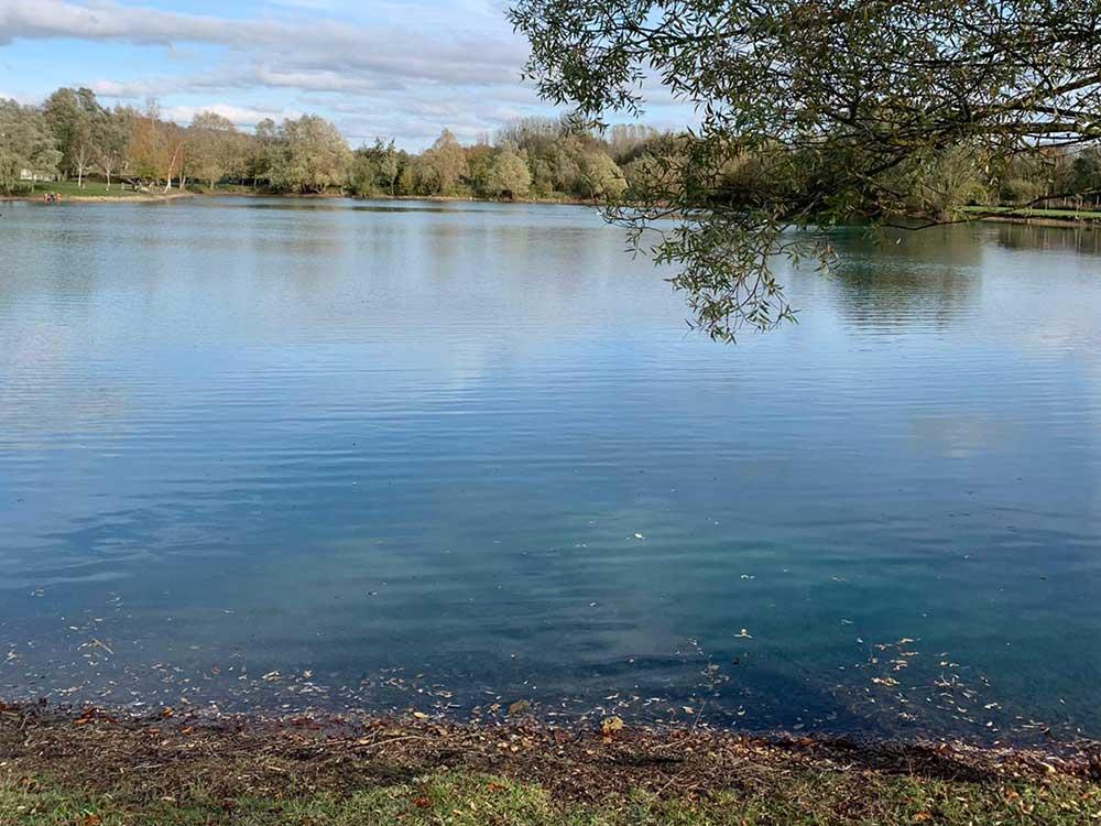 Rouen Swim Willow Lake